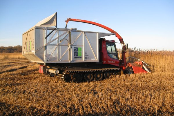 Piston Bulley harvesting reed